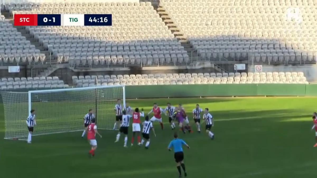 NPL 2 NSW Round 19 - St George City vs Northern Tigers Highlights