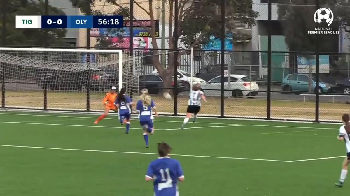NPLW NSW Preliminary Final - Northern Tigers v Sydney Olympic Highlights