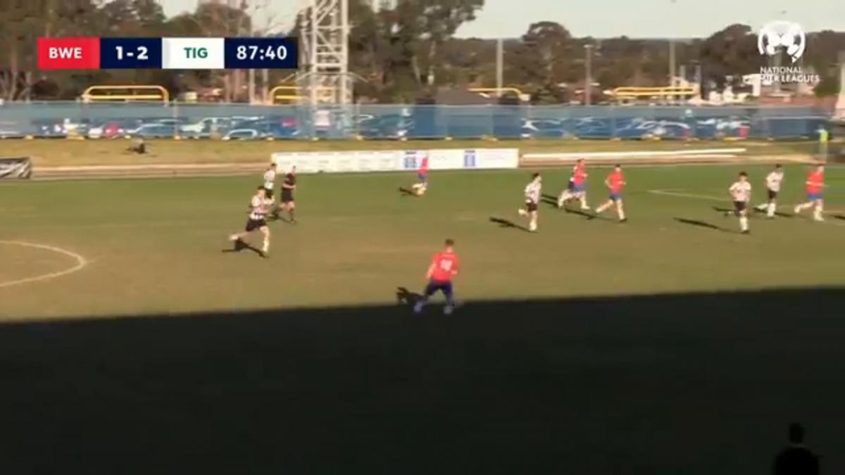 NPL2 NSW Elimination Final - Bonnyrigg White Eagles vs Northern Tigers Highlights