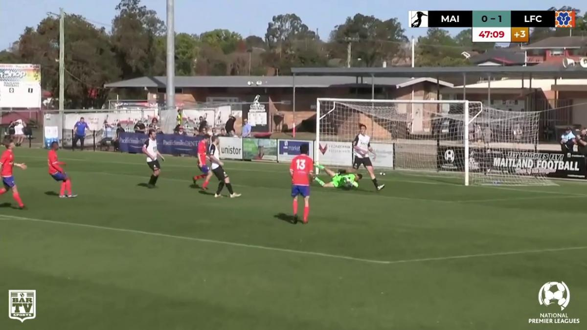 Maitland FC v Lions FC - NPL 2019 Semi Final Match Highlights