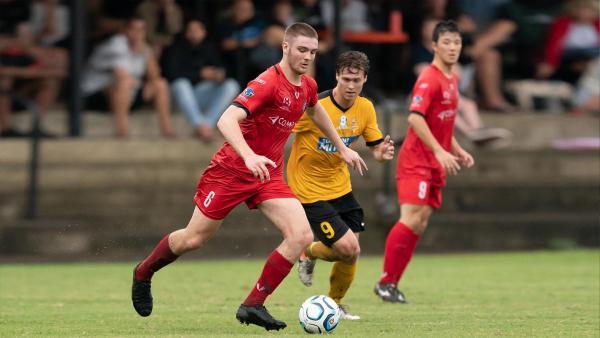 Redlands United Sunshine Coast Wanderers